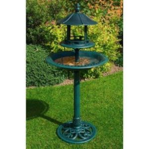 Kingfisher Definition Bird Bath