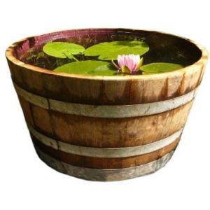 Temesso Plant Wine Making