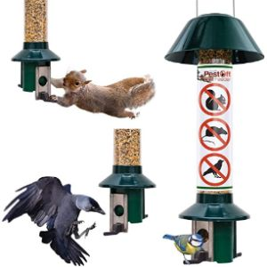 Roamwild Anti Squirrel Bird Table