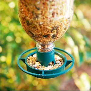 Parkland Hanger Window Bird Feeder