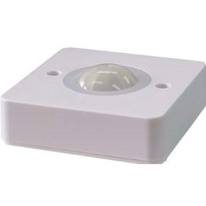 Light Indoor Motion Detector