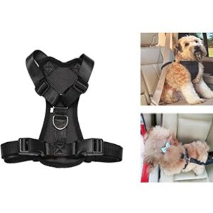 Bxt Cat Safety Vest