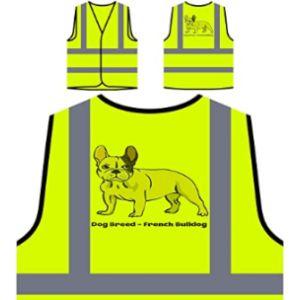 Innoglen Class 1 Safety Vest