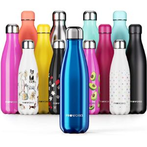 Proworks Large Insulated Water Bottle