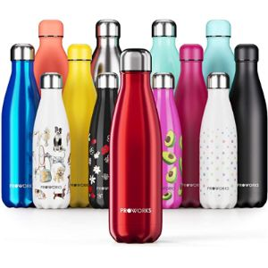 Proworks Comparison Insulated Water Bottle