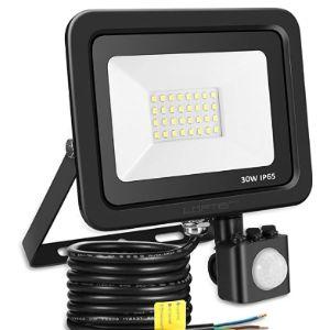 Lofter Outdoor Motion Sensor Light