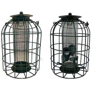 Foglish Guard Bird Feeder
