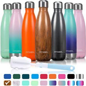 Arteesol Vacuum Sealed Water Bottle