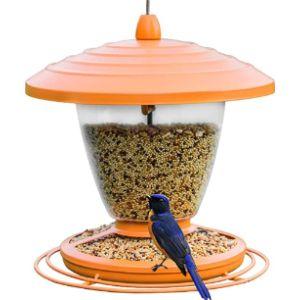 Qaryyq Bird Feeder Orange