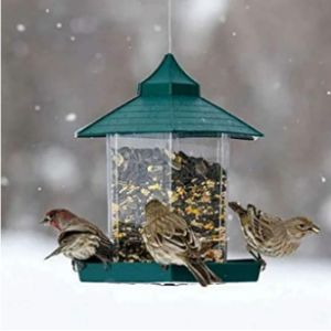 Ourleeme Gazebo Style Bird Feeder