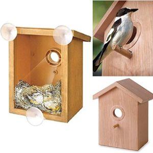 Adeptna Build Window Bird Feeder