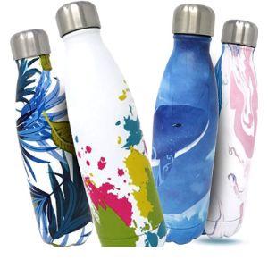 Bottles Empire Best Vacuum Insulated Water Bottle