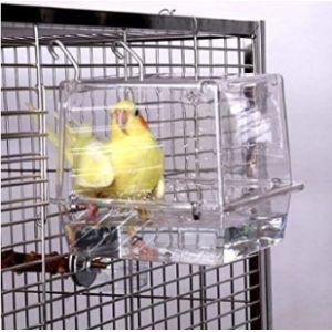 Kintor Inside Cage Bird Bath