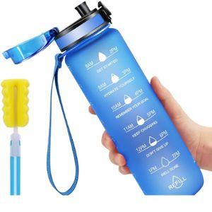 Favofit Fruit Infused Best Water Bottle