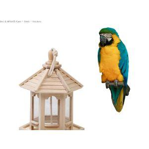 Azxaz Gazebo Style Bird Feeder