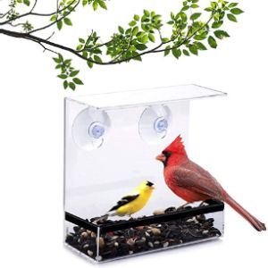 Forgetme Clear Plastic Window Bird Feeder