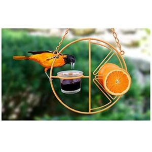 Fanhhui Bird Feeder Orange