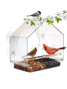 DJLOOKK natures hangout  window bird feeders
