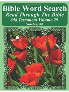 Independently published bible  number 8S