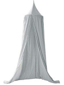 XHD grey  bed bugs
