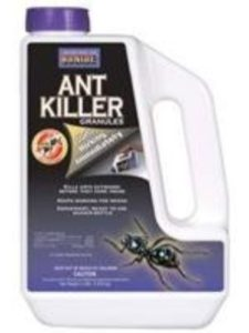 Bonide lawn  flea treatments