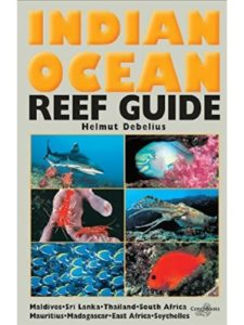 Debelius ocean  south africas