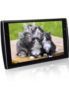 WZMIRAI raspberry pi  multimedia players
