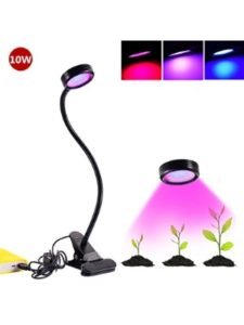 Florally usb adapter  light bulbs