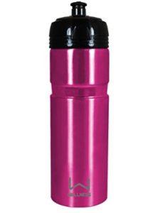 Wellness stainless steel bottle