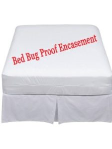 Aaf Textiles zippered mattress protector  bed bugs