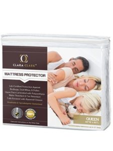Cozray zippered mattress protector  bed bugs