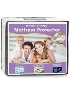 Windsleeping zippered mattress protector  bed bugs