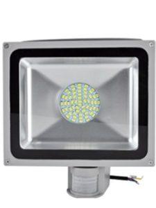amazon daylight  detectors
