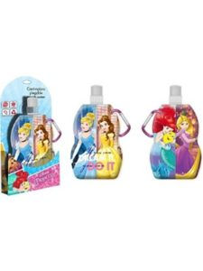 DISNEY collapsible water bottle
