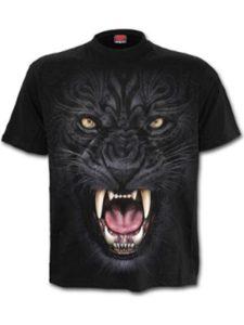Spiral    heavy metal cats