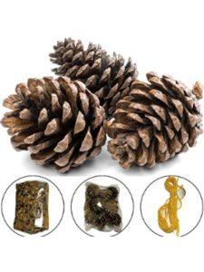 Herbal Crafts    pine cone bird feeders
