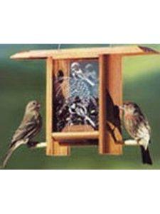 Schrodt    pine cone bird feeders