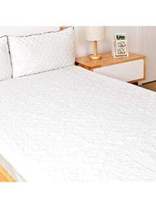 Oakome queen mattress protector  bed bugs