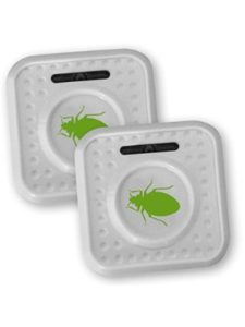 ISOTRONIC bed bug
