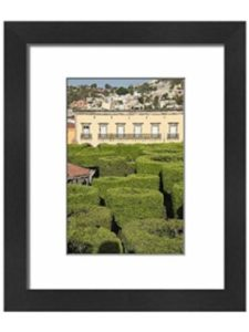 Robert Harding vertical garden  mexico cities
