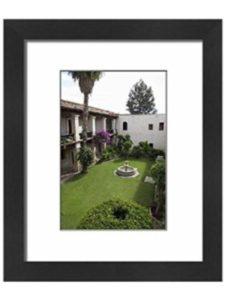 WorldInPrint vertical garden  mexico cities