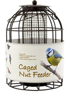 Green Jem brome  bird feeders