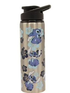Disney insulated water bottle
