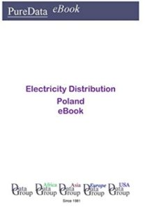 Editorial DataGroup Europe    electricity market books
