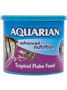 API    fish food diets