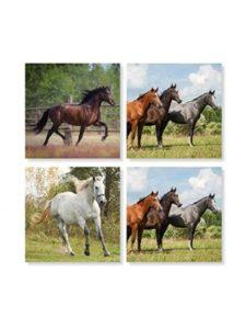 Carson horse  set squares