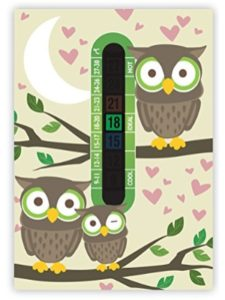 Funky Monkey House wall thermometer
