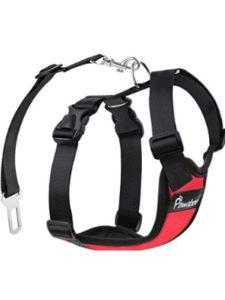 Pawaboo restraint  safety vests