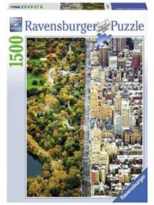 Ravensburger york jigsaw