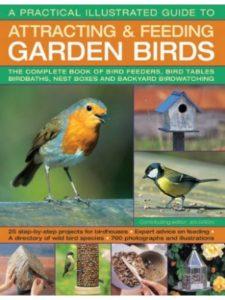Southwater    bird feeder guides